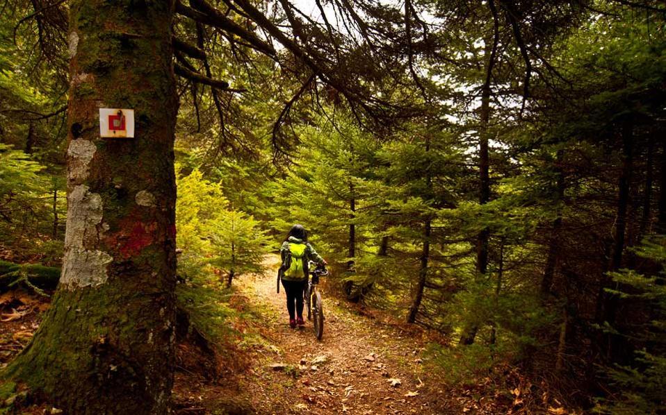 Η Γιάννα Ρηγοπούλου, «μάχιμο» μέλος του ΕΟΣ Χαλκίδας, ετοιμάζεται να διασχίσει με mountain bike το ωραιότατο μονοπάτι Σ3 για Ξηροβούνι. Φωτογραφία: Κλαίρη Μουσταφέλλου