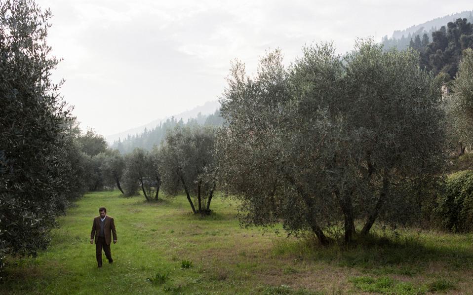 Ακρογωνιαίος λίθος της μεσογειακής διατροφής το ελαιόλαδο, αλλά όπως επισημαίνουν οι ερευνητές, η μεσογειακή διατροφή δεν είναι απλώς μια ομάδα τροφίμων αλλά τρόπος ζωής.