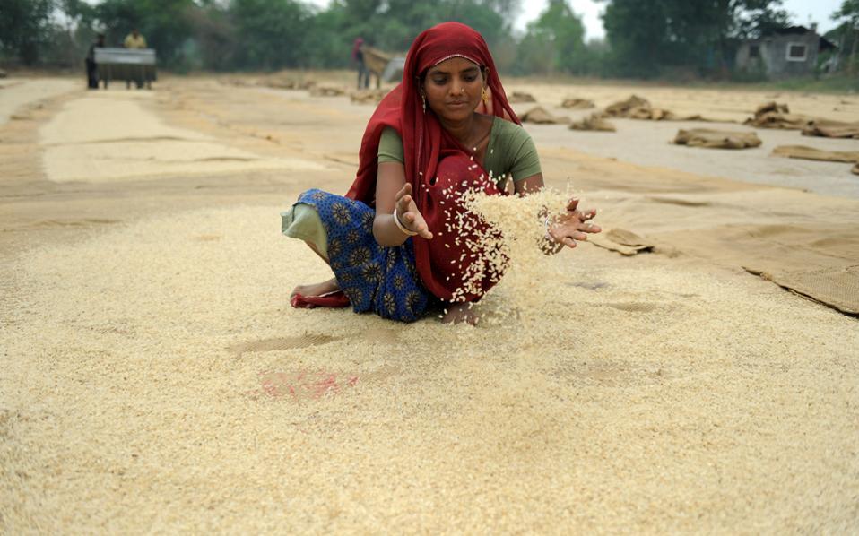 Ο δείκτης που παρακολουθεί τις τιμές 73 τροφίμων αυξήθηκε δραστικά κατά 3,9%, στις 162 μονάδες, τον Οκτώβριο.