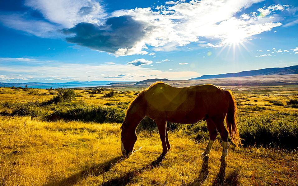 Τραχύ και άγριο, το νοτιότερο άκρο της Νότιας Αμερικής είναι μια αχανής αγροτική περιοχή. (Φωτογραφία: ΓΙΑΝΝΗΣ ΚΟΝΤΟΣ)
