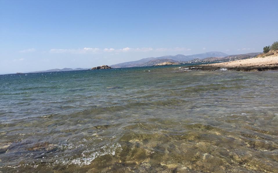 Aφιερωμένο «το χρονικό των αχινών» στους κολυμβητές της απόμερης ακρογιαλιάς στο 41ο χλμ. της Σαρωνίδας, μακριά από ανέσεις και πολυθρόνες κ.λπ. Πώς να παίξεις, π.χ. ρακέτες στα βράχια! Kαι του χρόνου, χωρίς αγκάθια...