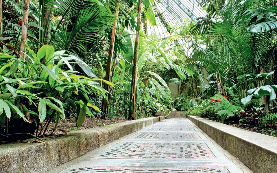 Ο Βασιλικός Βοτανικός Κήπος έχει τη μεγαλύτερη συλλογή βοτάνων στην Ισπανία. (RJB, Johan Nordin)
