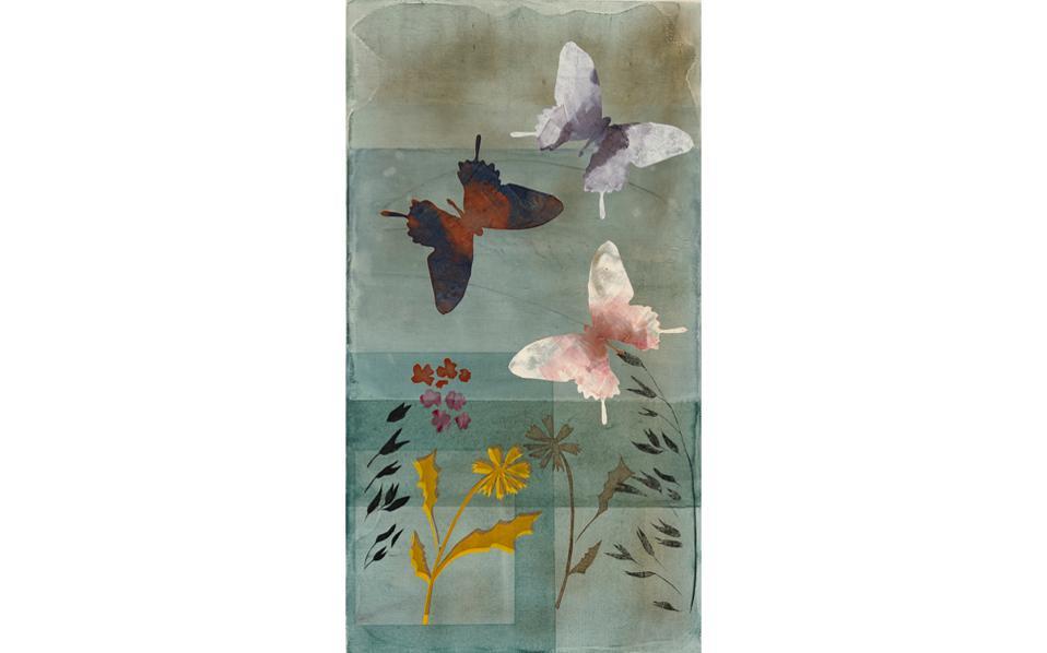 Λουλούδια, βότανα και πεταλούδες σε διαρκή χορό στη χορογραφία της Φύσης, από τη ζωγράφο-χαράκτρια Iρις Ξυλά Ξαναλάτου.