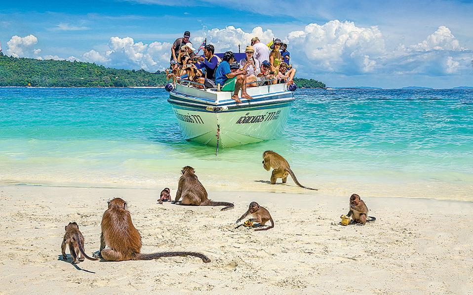 Η παραλία Monkey Beach γεμίζει μαϊμουδάκια. Προσοχή, δαγκώνουν! (Φωτογραφία: FRANCOIS FOURRIER)