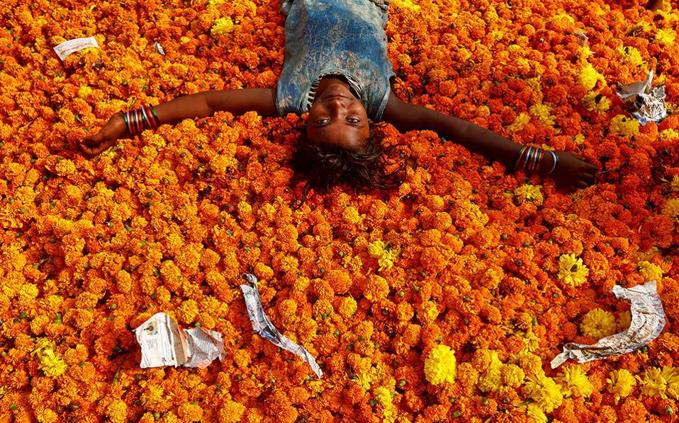Μετά την γιορτή. Μπορεί κανείς να μην τις προσέφερε μια γιρλάντα με πορτοκαλί κατιφέδες για την γιορτή. Μια μέρα μετά όμως, όταν η Diwali έγινε παρελθόν για το Mumbai, το μικρό κορίτσι παίζει στα βουνά των λουλουδιών που δεν στόλισαν κανέναν. REUTERS/Shailesh Andrade