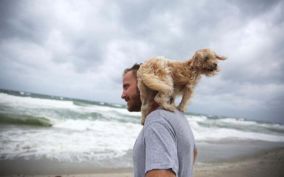 'Έρχεται. Αν και αδύναμος (από τυφώνα έχει υποβιβαστεί σε καταιγίδα, τύπου 4 όμως) καταφτάνει ο Mattew, που σάρωσε την Αϊτή και τώρα ετοιμάζεται να εισβάλει στο Palm Beach. Καταστήματα σφράγισαν τα τζάμια τους, καταναλωτές άδειασαν για προμήθειες τα ράφια και όσοι είχαν την δυνατότητα, έφυγαν από την περιοχή. Στην φωτογραφία ο Ted Houston και ο σκύλος του Kermit απολαμβάνουν τα πρώτα σύννεφα της καταιγίδας στην παραλία, ξέροντας ότι για μερικές ακόμη ώρες είναι ασφαλείς. Joe Raedle/Getty Images/AFP