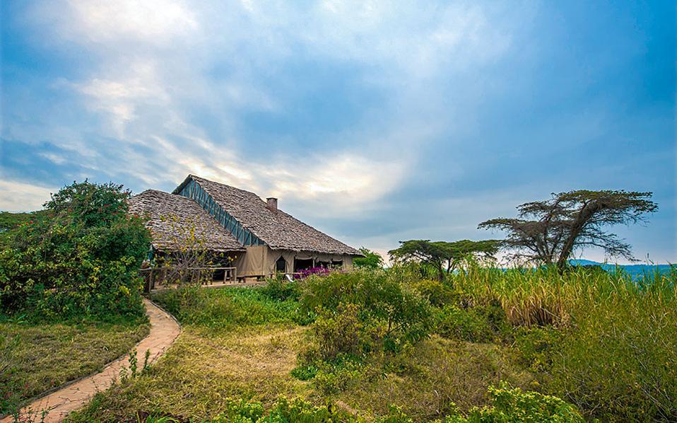 To ξενοδοχείο Rhotia Valley στο Ngorongoro χρηματοδοτεί με τα έσοδά του το ορφανοτροφείο του απέναντι λόφου.