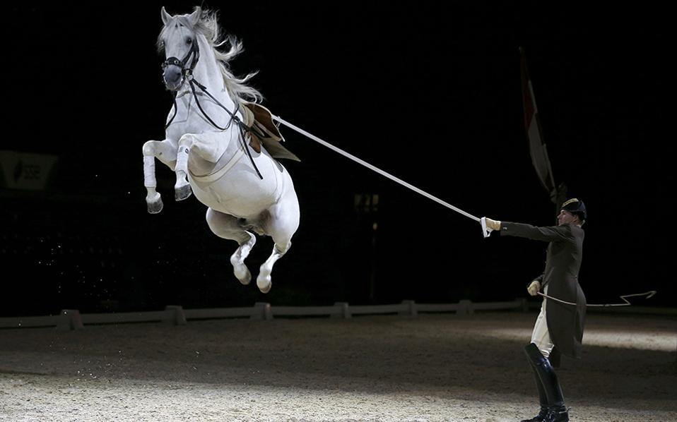 Η κατάλληλη παράσταση. Στην Αγγλία όπου λατρεύουν την ιππασία και τα άλογα γενικότερα, και συγκεκριμένα στο Λονδίνο θα δώσει παραστάσεις το φημισμένο Spanish Riding School της  Βιέννης.  REUTERS/Peter Nicholls