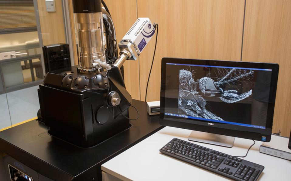 Λεπτομέρεια από το σώμα ενός κουνουπιού, μεγεθυσμένη στο νέο ηλεκτρονικό μικροσόπιο του Wienner Laboratory της Αμερικανικής Σχολής Κλασσικών Σπουδών στην Αθ'ήνα, το οποίο με ακτίνες Χ μπορεί να κάνει χημική ανάλυση του δείγματος.