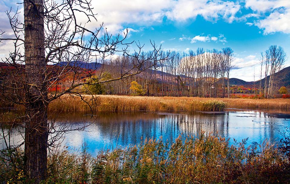 Η λίμνη Αγρα, παρότι είναι τεχνητή, έχει εξελιχθεί σε σημαντικό υγροβιότοπο. (Φωτογραφία: ΚΛΑΙΡΗ ΜΟΥΣΤΑΦΕΛΛΟΥ)