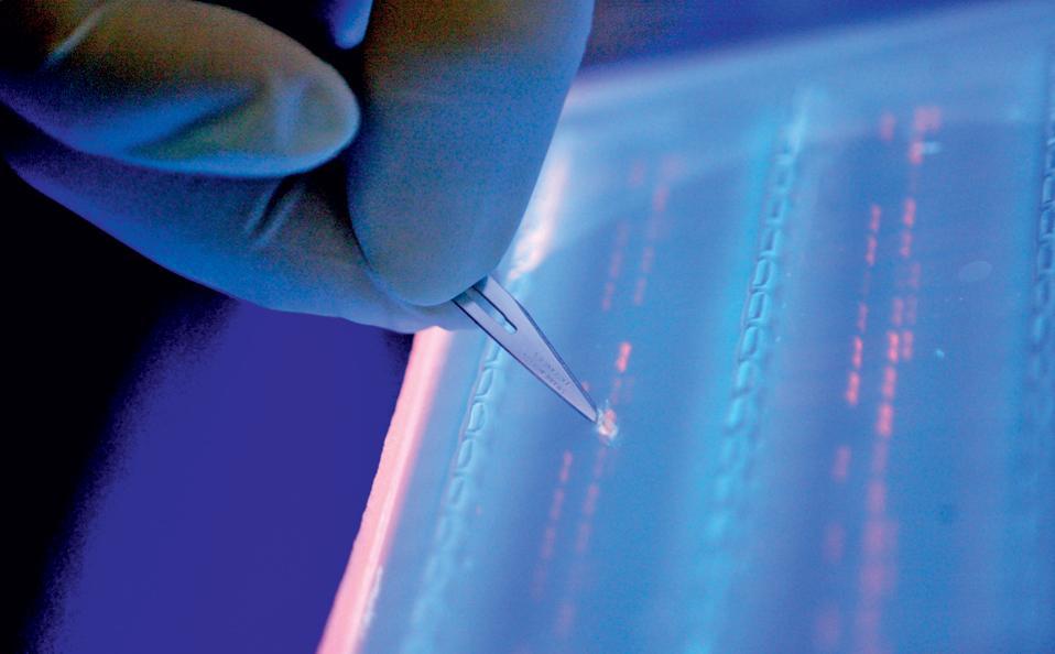 Ανοιξε ο δρόμος για τη γενετική τροποποίηση των εμβρύων για θεραπευτικούς αποκλειστικά λόγους.
