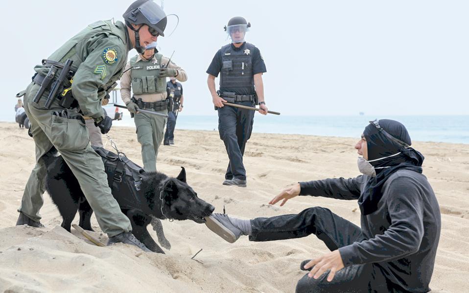 Ακτιβιστής ακινητοποιείται από αστυνομικό σκύλο στο Χάντιγκτον Μπιτς της Καλιφόρνιας, ύστερα από συμπλοκές μεταξύ οπαδών και αντιπάλων του προέδρου Τραμπ, που προκάλεσαν παρέμβαση των αστυνομικών δυνάμεων.