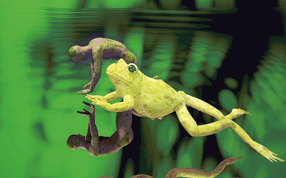 Εντυπωσιακά stills από τα βίντεο που προβάλλονται στα «Παρατοξικά Παράδοξα» στο Μουσείο Μπενάκη Πειραιώς μέχρι τα τέλη Μαΐου.