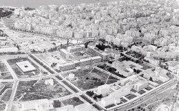 Πανοραμική της πανεπιστημιούπολης και της ΔΕΘ, 1970 (Τεκμήρια Φωτογραφικού Αρχείου 1900-1980).