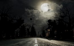 driving_in_the_dark_survey