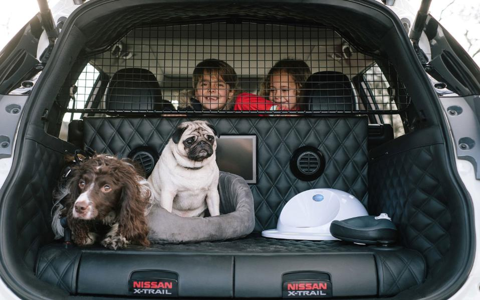 nissan_x_trail_4dogs1