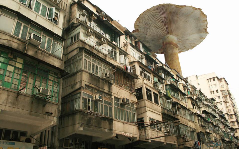 Η πόλη του μέλλοντος, όπως την οραματίστηκε ο Αγγλος σχεδιαστής Tobias Revell.