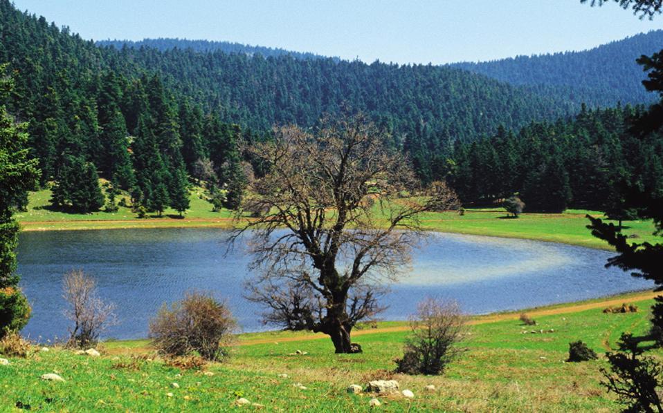 Η λίμνη Καλλιδρόμου στη Φθιώτιδα. Το κατάφυτο όρος δεν έχε καεί ποτέ από μεγάλη πυρκαγιά, ούτε έχει εξορυχθεί.