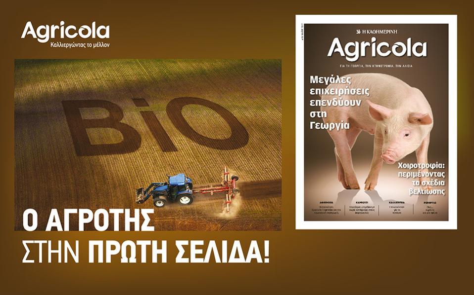 o-agroths-sthn-prwth-selida--2