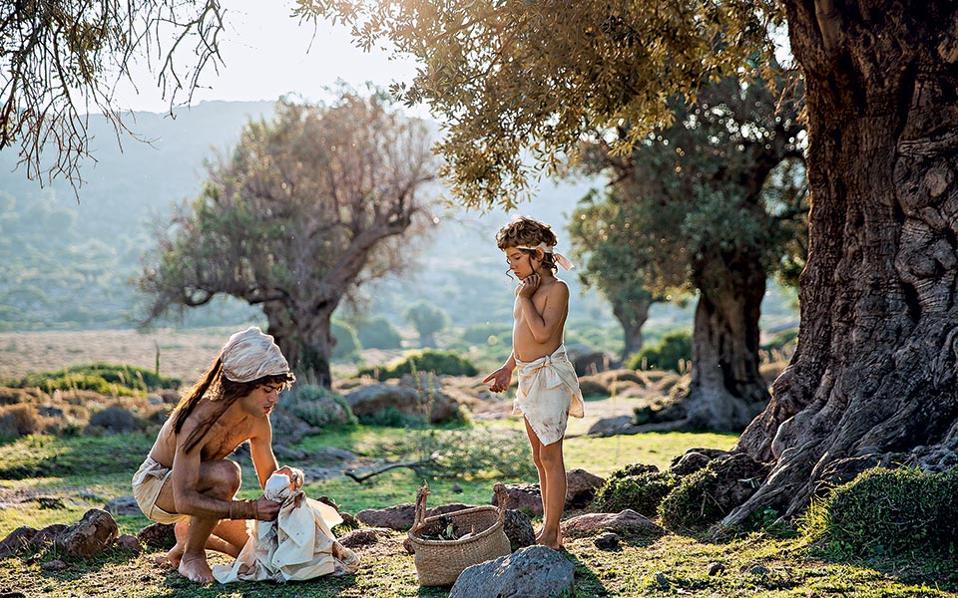 olive_mg_0906