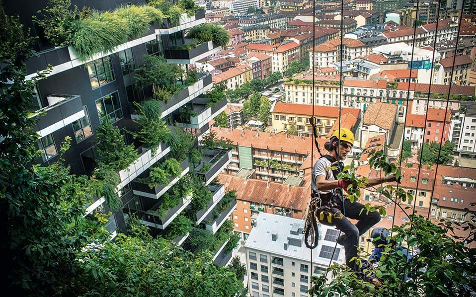 va_urban_rooftops_pr_362-363