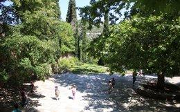 Το φυτώριο της Φιλοδασικής διαθέτει περίπου 250 είδη φυτών, ελληνικών και μεσογειακών, που έχουν αναπτυχθεί χωρίς φυτοφάρμακα. Παράλληλα, εδώ και ένα χρόνο, υπάρχει κι ένας δεύτερος μικρός κήπος, δίπλα στη Μονή Καισαριανής, ο οποίος προορίζεται για το ευρύ κοινό και ειδικά για σχολεία.
