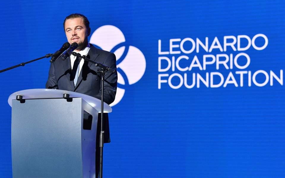 leonardo-dicaprio-foundation
