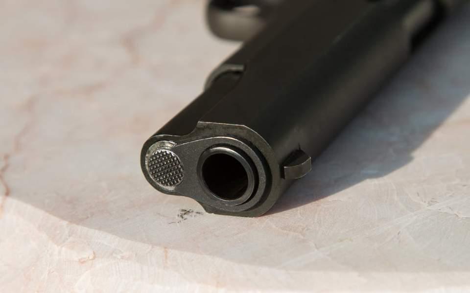 gun231234123