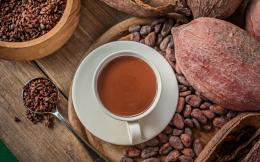 nor_cacao_beans_and_drink