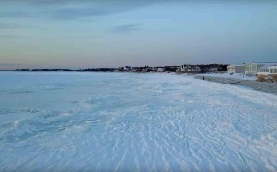 usfrozen