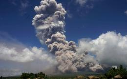 web-erupting-may