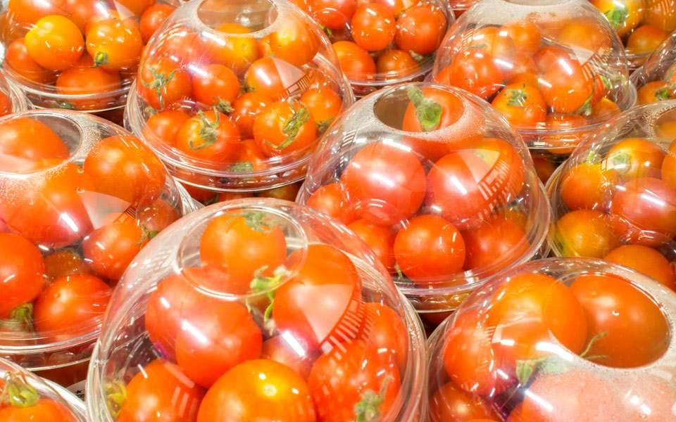 nor_viologika_tomatinia