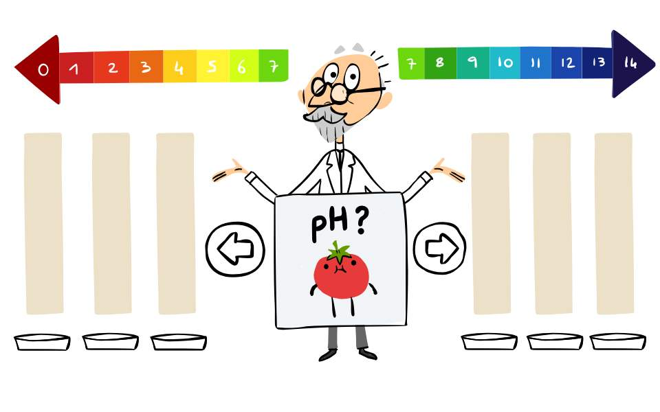 google-doodle--2