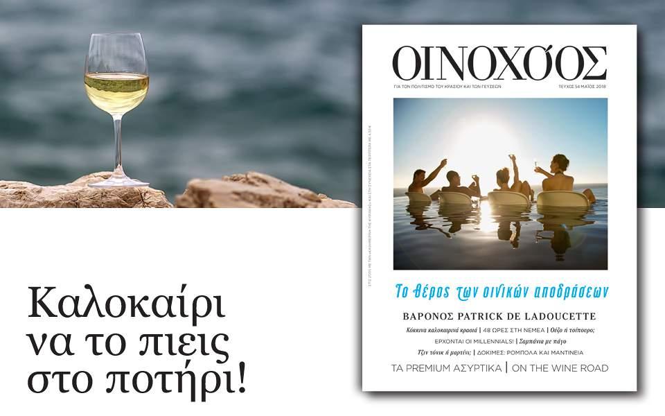 oinox-54_960x600