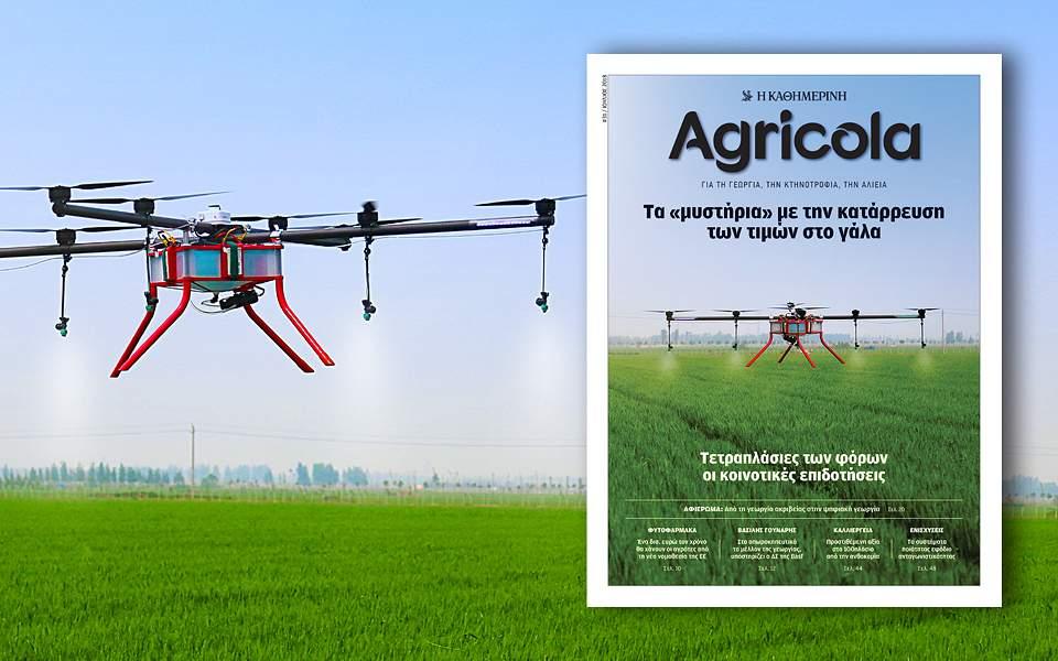 agricola-31-960x600-1