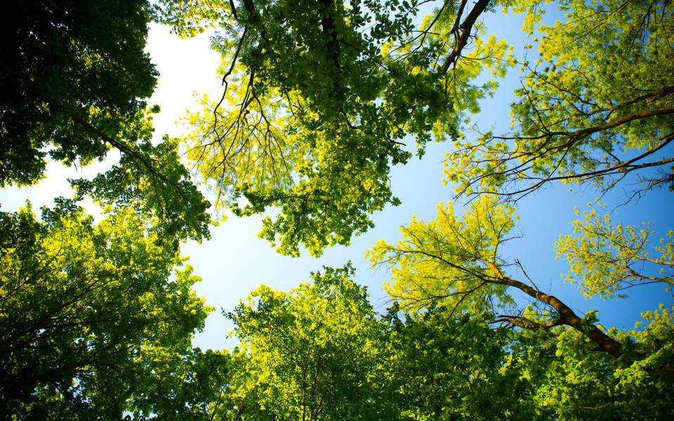 sunny-weather-