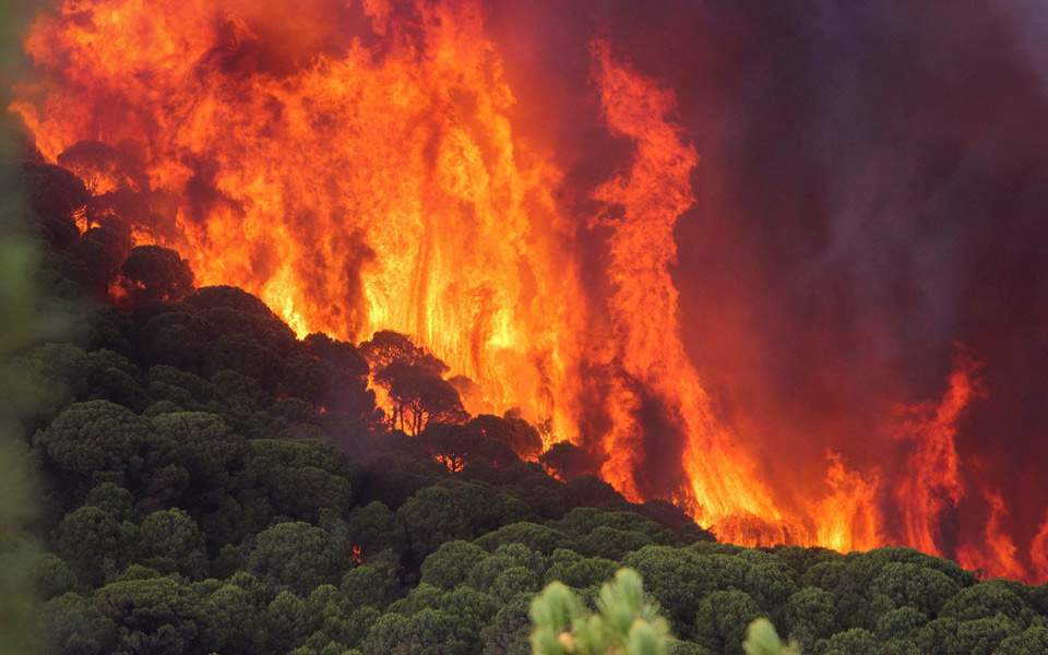 wildfire-in-