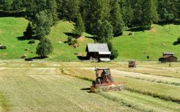 nor_farm_switzerland
