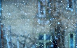 blur-blurred-cold-948857