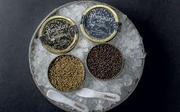 nor_caviar