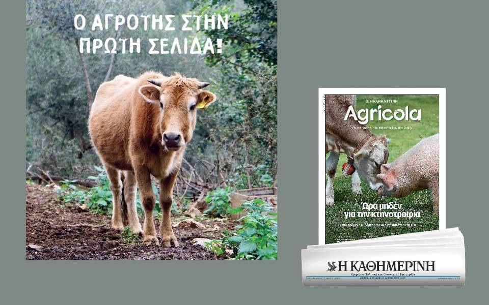 agricola_36_-kathimerinh_digital-banners_templates_960x600--2