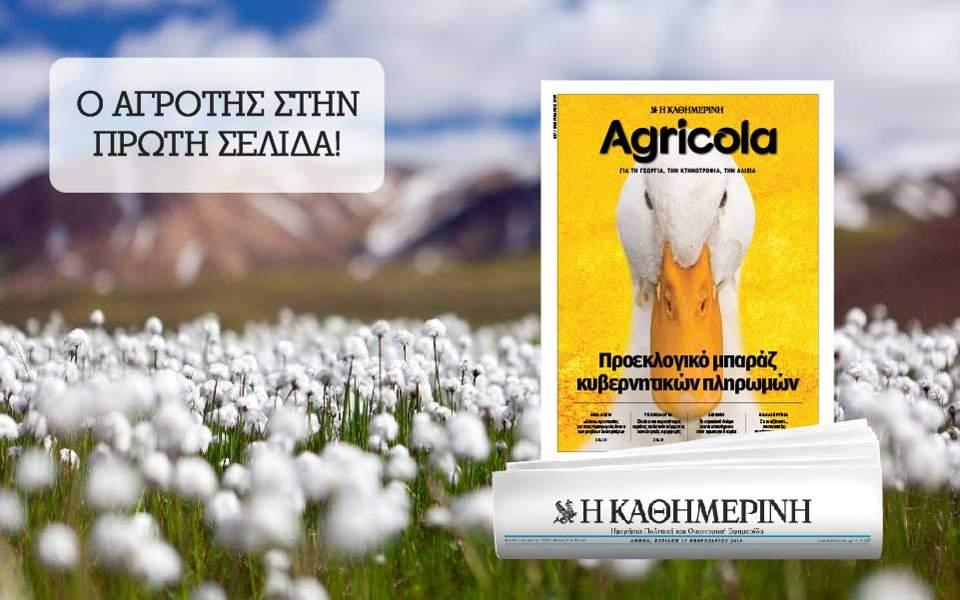kathimerinh_digital-banners_templates_960x600-2