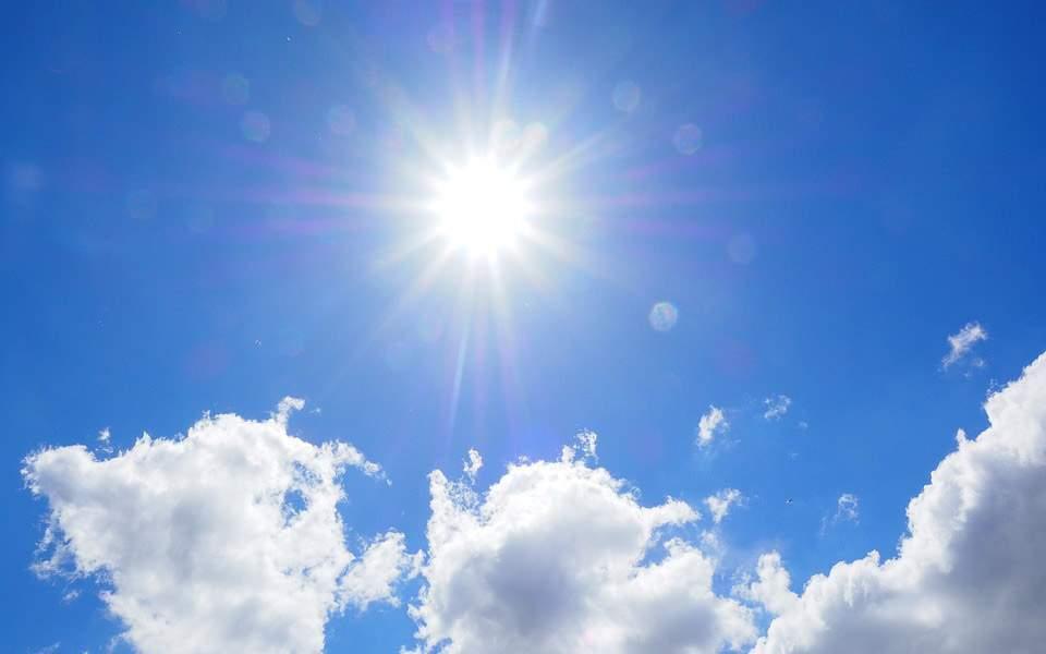 sunny23434-thumb-large