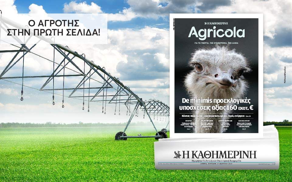 agricola_38_digital-banners_templates_960x600
