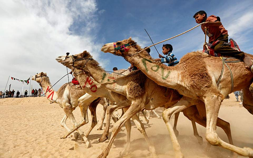 kamilo