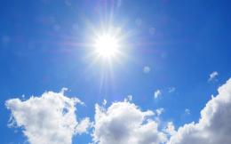 sunny23434-thumb-large--2