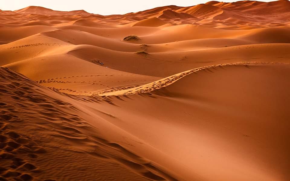 dawn-desert-dry-273935