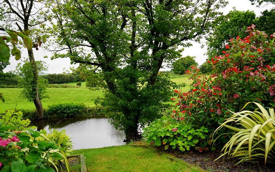 for Garden pond design software free download