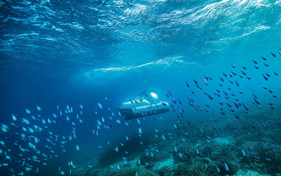 scuber-travelling-amongst-marine-life-at-heron-island-credit---tourism-and-events-queensland