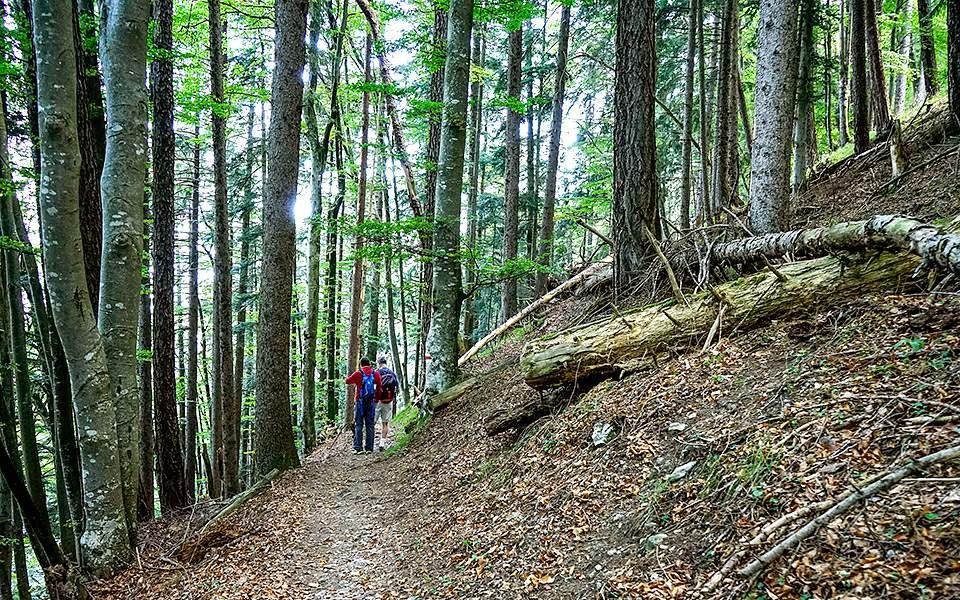 liechtenstein-trail-adv26-4_1883930